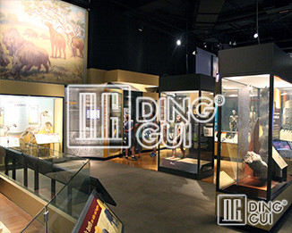 Dinggui Museum Display Showcase Manufacturers Take You To Know The